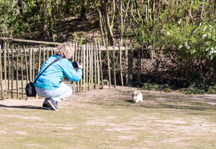 Hanka fängt mit ihrer Kamera ein Kanichen ein (c) FRank Koebsch