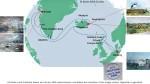 Karte der Kreuzfahrt Grönland – Island mit der AIDAcara, Grönland - Diskobucht (2) – Karte AIDA Cruises – Aquarelle Hanka & Frank Koebsch
