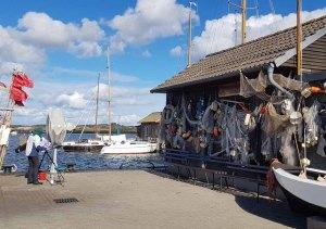 Malen im Hafen von Gager © Frank Koebsch (8)