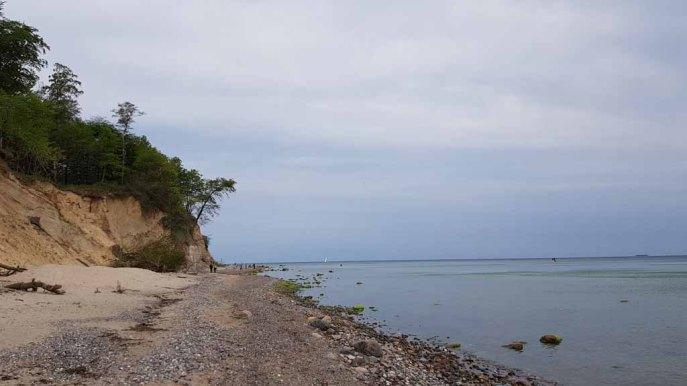 Steilküste an der Stoltera (c) FRank Koebsch (2)