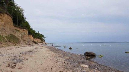 Steilküste an der Stoltera (c) FRank Koebsch (5)