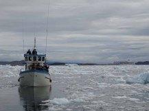 Wir entdecken das Grönland Eis in der Disko Bucht (7) Hanka Koebsch