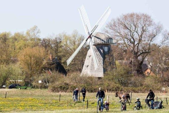 Ahrenshooper Mühle (c) FRank Koebsch (7)