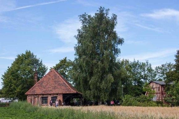 Blick auf die Schmiede und die Stellmacherei im Freilichtmuseum Klockenhagen (c) Frank Koebsch