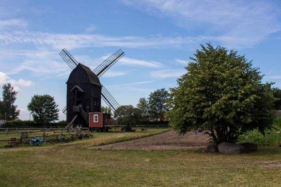 Bockwindmühle Groß Ernsthof im Freilichtmuseum Klockenhagen (c) Frank Koebsch (4)