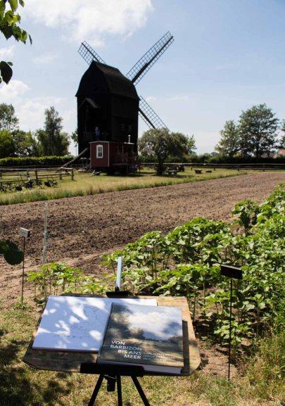 Schau`n wir mal wie Carl Malchin Bockwindmühlen gemalt hat (c) FRank Koebsch (1)