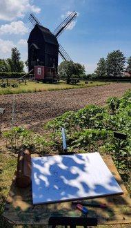 Ein Aquarell von der Bockwindmühle entsteht im Freilichtmuseum Klockenhagen (c) FRank Koebsch (1)