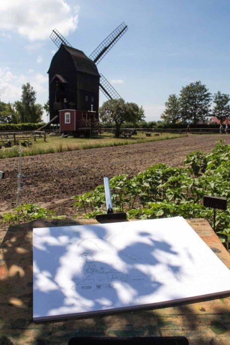 Ein Aquarell von der Bockwindmühle entsteht im Freilichtmuseum Klockenhagen (c) FRank Koebsch (2)