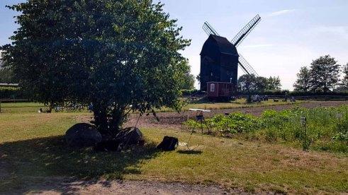 Mein Malort bei der Mühle im Freilichtmuseum Klockenhagen (c) FRank Koebsch (1)