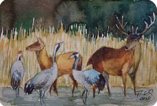 Abendgesellschaft (c) eine Miniatur mit Kranichen und Hirschen in Aquarell von Frank Koebsch