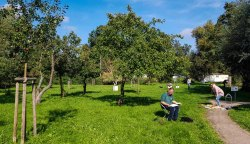 Aquarellkurs im Park hinter dem Kunstmuseum Schwaan (c) Frank Koebsch (11)