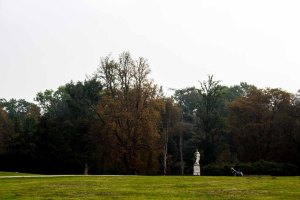 Herbst im Schloßpark Putbus (c) FRank Koebsch (1)