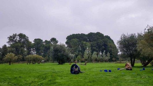 Kunst im Park hinter dem Kunstmuseum Schwaan (c) Frank Koebsch (1)