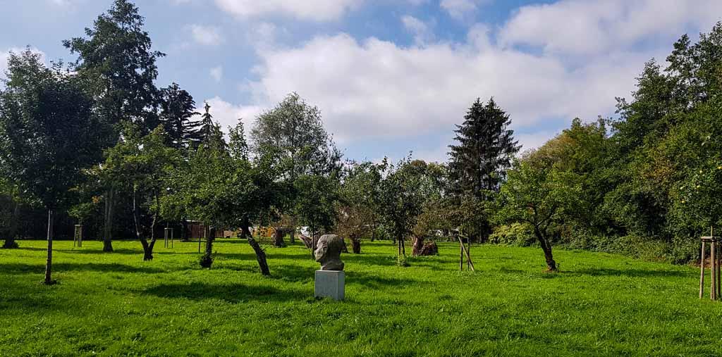 Streuobstwiese im Park hinter dem Kunstmuseum Schwaan (c) Frank Koebsch (2)