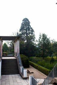 Terrasse im Schloßpark Putbus (c) Frank Koebsch (1)
