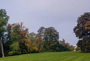 Wiese mit Blick auf die Orangerie im Schloßpark (c) Frank Koebsch (3)