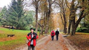 Wir erkunden die Kastanien Allee im Schloßpark Putbus (c) Frank Koebsch