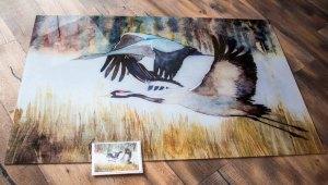 Druck und Faltkarte vom Kranich Aquarell - Majestätisch - auf Acrylglas im Format 80 x 120 cm (c) FRank Koebsch