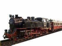 Molli mit metallischen Glanz als Vorlage für den Weihnachtsmann Express (c) Frank Koebsch