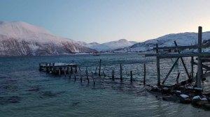 Winter in Sandneshamn - auf dem Weg von Tromsø nach Sommarøy (c) FRank Koebsch (13)