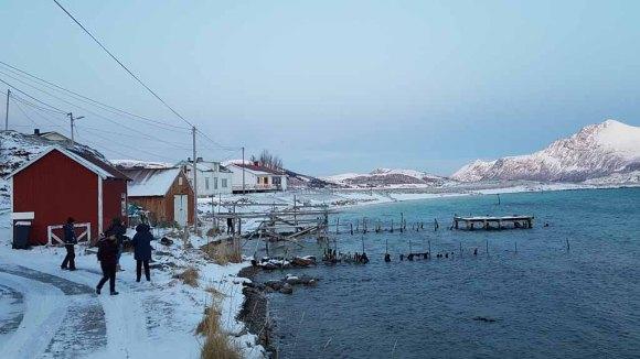Winter in Sandneshamn - auf dem Weg von Tromsø nach Sommarøy (c) FRank Koebsch (5)