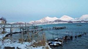 Winter in Sandneshamn - auf dem Weg von Tromsø nach Sommarøy (c) FRank Koebsch (6)