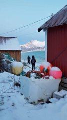 Winter in Sandneshamn - auf dem Weg von Tromsø nach Sommarøy (c) FRank Koebsch (9)