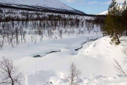 Verschneite norgwegische Landschaft bei Camp Tamok (c) Frank Koebsch (1)