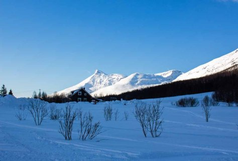 Verschneite norgwegische Landschaft bei Camp Tamok (c) Frank Koebsch (5)