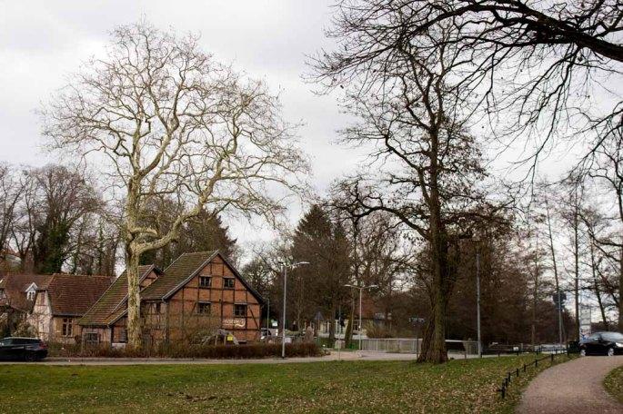 Bei der Schleifmühle in Schwerin (c) Frank Koebsch (1)