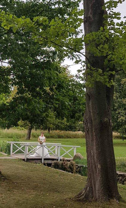 Braut im Park des Doberaner Münsters (c) Frank Koebsch (2)