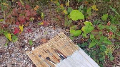 Malreise Rügen - Farben vom Herbst auf Rügen und die passenden Pinsel (c) FRank Koebsch