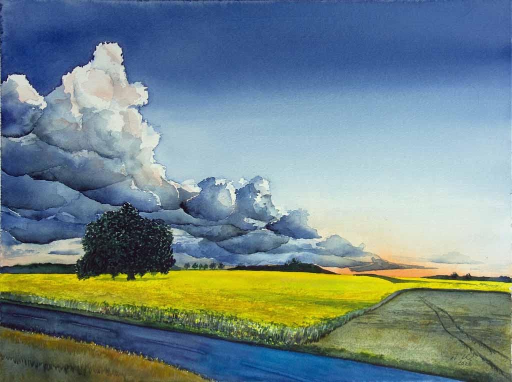 Abend über den Rapsfeldern (c) Aquarell von Frank Koebsch