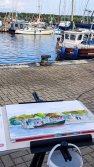 Malreise Rügen - Malen im Hafen von Thiessow (c) Frank Koebsch (9)