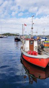 Malreise Rügen - Motivsuche bei den Kuttern im Hafen Thiessow (c) FRank Koebsch (1)