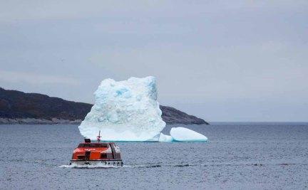 Tendern von der AIDA Cara nach Ilimanaq an der Diskobucht (c) Frank Koebsch (1)