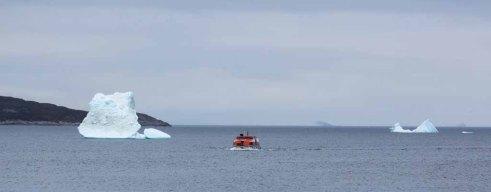 Tendern von der AIDA Cara nach Ilimanaq an der Diskobucht (c) Frank Koebsch (2)