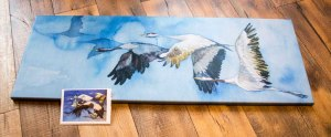 Druck auf Leinwand vom Kranich Aquarell – auf den Weg nach Rügen – im Format 40 x 110 cm und die Faltkarten vom Aquarell – Formationsflug © Frank Koebsch