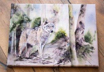 Druck auf Leinwand vom Wild life Aquarell mit einem Wolf – Neue Wege – im Format 30 x 40 cm © Hanka Koebsch