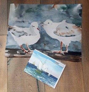 Posterdruck im Format 30 x 40 cm vom Möwen Aquarell – Schon gehört und Faltkarte – Hanse Sail (c) Hanka Koebsch