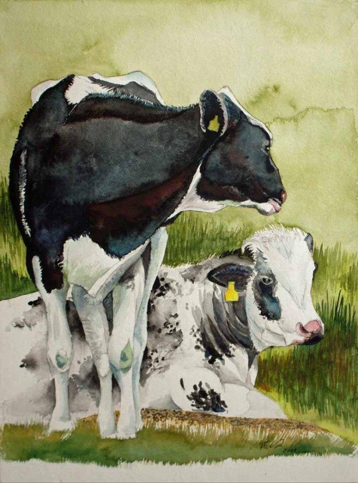 Schwarzbunte Kühe (c) Aquarell von Frank Koebsch