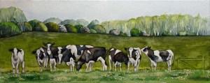 Glücklichen Kühe in der Landschaft Mecklenburgs (c) Aquarell von Frank Koebsch