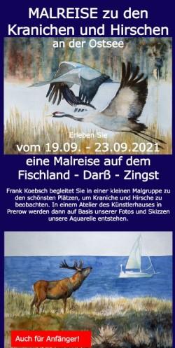 Malreise zu den Kranichen und Hirschen an der Ostsee