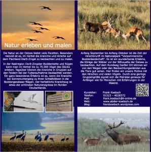 Malreise zu den Kranichen und den Hirschen an der Ostsee vom 19. bis zum 23. September 2021 - Flyer Innenseiten