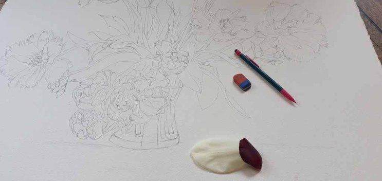 Vorzeichnung für das Aquarell - Ein wunderschöner Tulpenstrauß (c) Frank Koebsch (2)