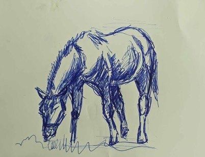 Skizze für ein Pferdeaquarell (c) Frank Koebsch (1)