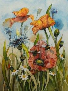 Sommerwiese mit Mohnblüten (c) Aquarell von Frank Koebsch