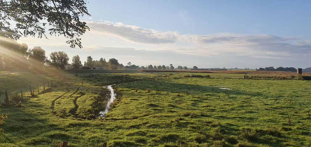 Boddenwiesen bei Middelhagen im Herbst (c) Frank Koebsch