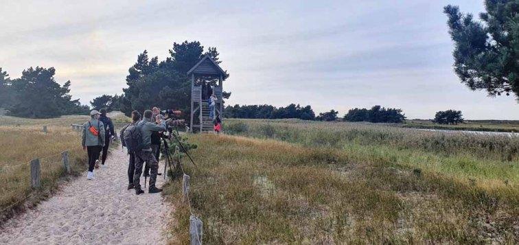 Fotografen auf der Pirsch nach Rothirschen am Darßer Ort (c) Frank Koebsch (2)