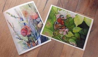 Das Schmetterlingsaquarell - Frühstück zu zweit auf einer Brombeerblüte - und das Aquarell . Disteln im Abendlicht. als Drucke uaf Hahnemühle Papier Abrecht Dürer